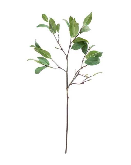 FAUX LAUREL LEAF STEM - McGee & Co.