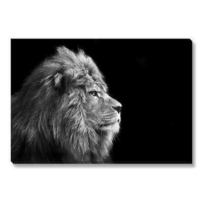 'Portrait Of Male Lion' Photographic Print on Wrapped Canvas - Wayfair