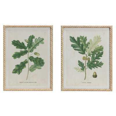 'Oak Print Vintage Reproduction' 2 Piece Framed Painting Set - Wayfair