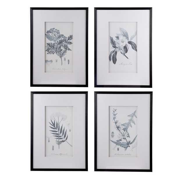 Botanical - 4 Piece Picture Frame Print Set on Paper - Birch Lane