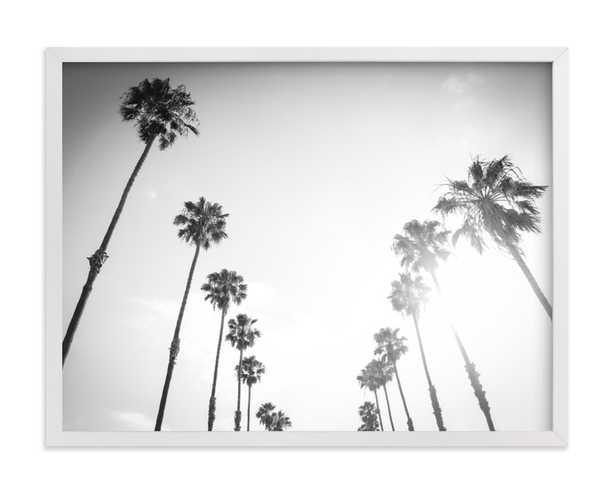 California Palms - Minted