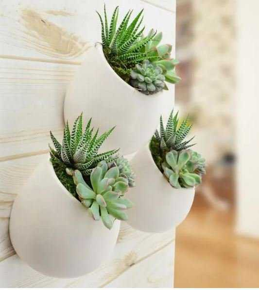 Round 3-1/2 in. x 4 in. Coral (Pink) Ceramic Wall Planter (3-Piece) - Home Depot