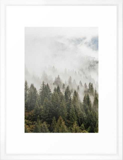 Forest Photography, Nature, Wilderness Framed Art Print - Society6
