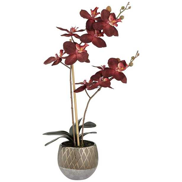 """Red Orchid 23"""" High Faux Flowers in Ceramic Pot - Lamps Plus"""