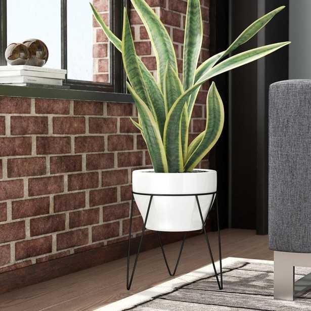 Crim Ceramic Pot Planter - Wayfair