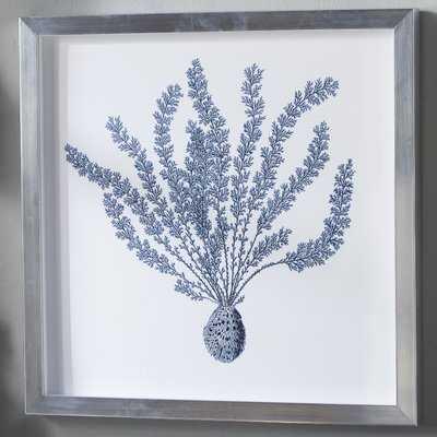 'Indigo Coral II' Picture Frame Graphic Art - Birch Lane