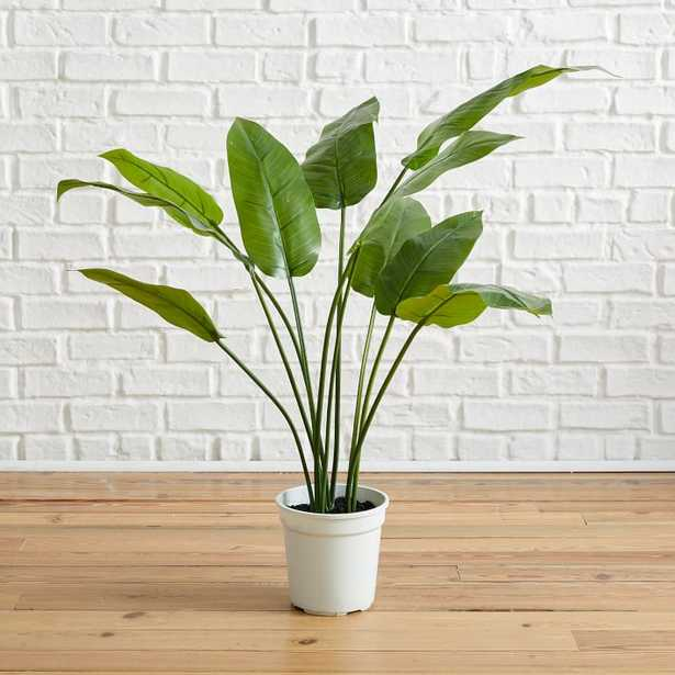 Faux Potted Bird of Paradise Plant Tree - West Elm