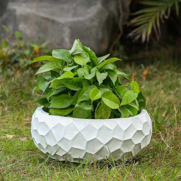 Alpert MgO Fiberclay Way Pot Planter - Wayfair