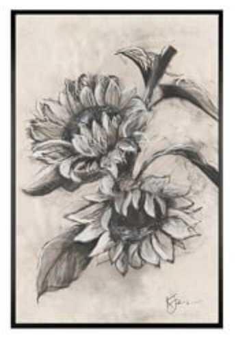 Charcoal Sunflower Single Bloom Framed 11 x 13 Matte Black Frame - Pottery Barn