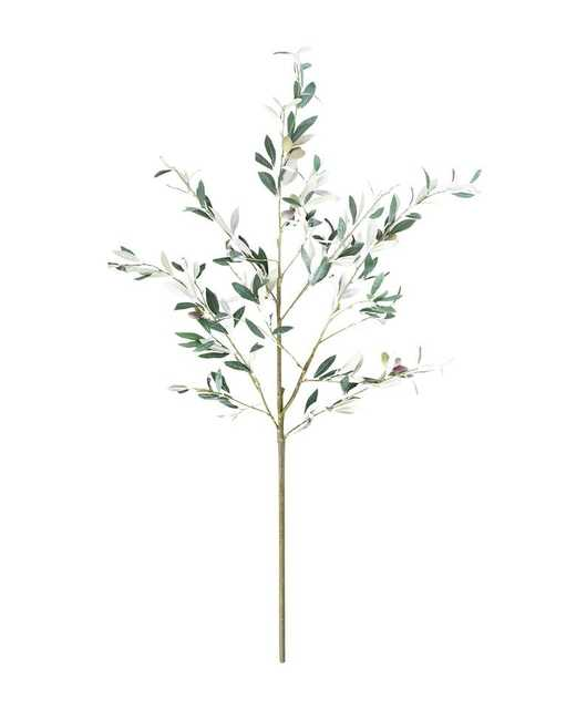 FAUX OLIVE BRANCH - McGee & Co.