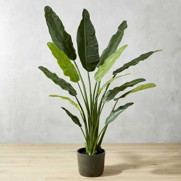 POTTED FAUX BIRD OF PARADISE 6' - CB2