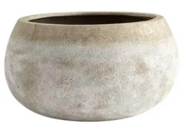 Terracotta Pot Planter - AllModern