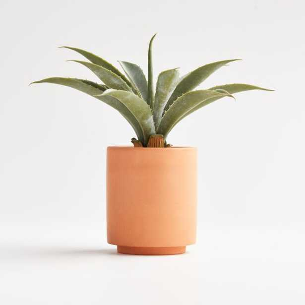 Artificial Aloe in Terracotta Pot - Crate and Barrel
