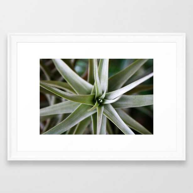 Plant Focus Framed Art Print - Society6