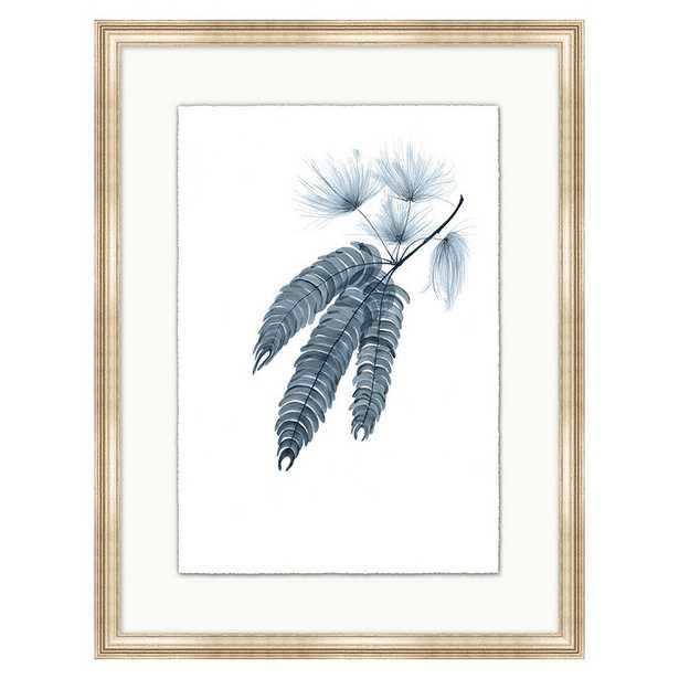 Fragile Blossoms Art - Cornflower Print XI - Ballard Designs