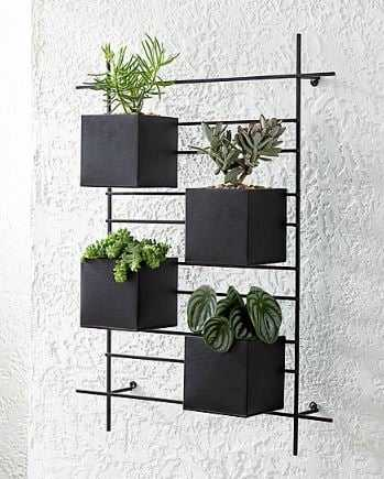 4 Box Wall Mounted Planter - Crate and Barrel