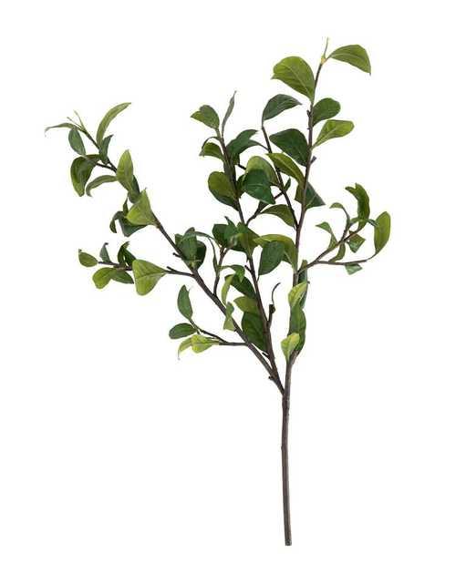 Gardenia Leaf Branch - McGee & Co.