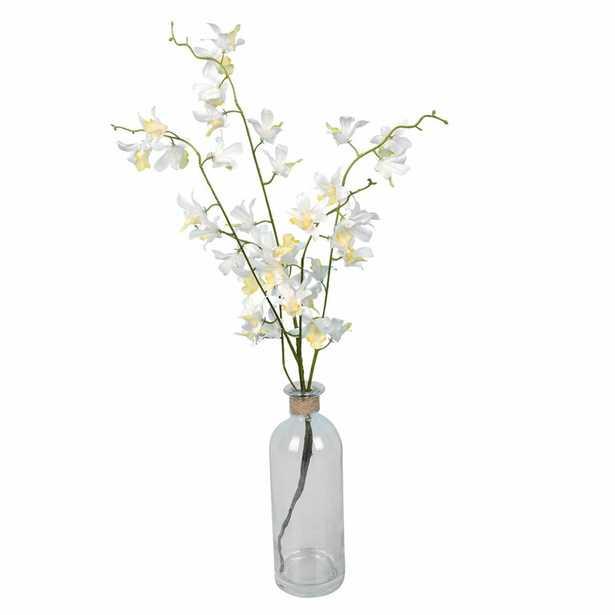 Orchids Floral Arrangements and Centerpieces in Vase - Wayfair