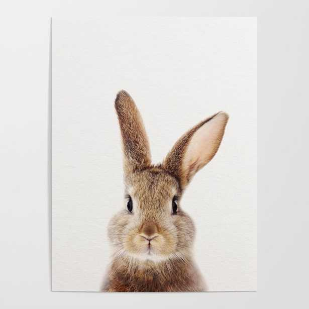 Baby Rabbit, Baby Animals Art Print By Synplus Poster - Society6