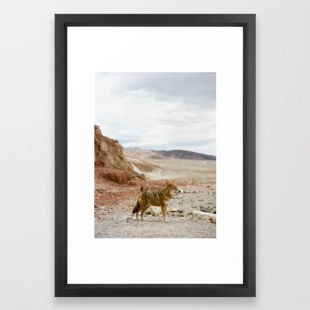 Coyote in Death Valley California Framed Art Print - Society6