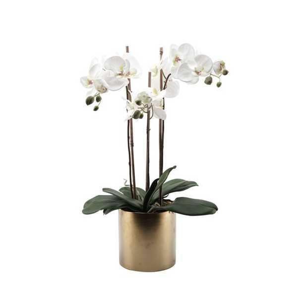 Faux Triple Phalaenopsis Orchid Floral Arrangement in Ceramic Vase - Wayfair