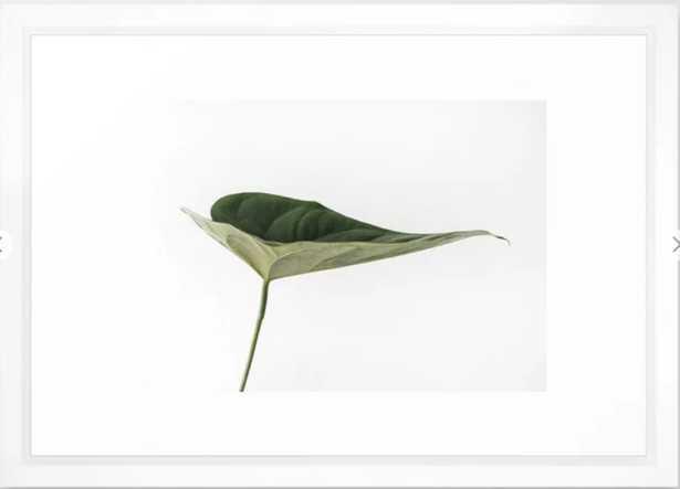 """Framed Art Print - Leaves Breathe Life - Vector White - 15"""" x 21"""" - Society6"""