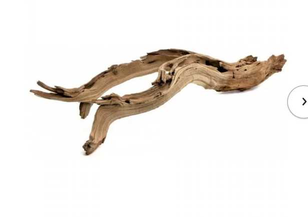 Decorative Natural California Driftwood Branch - Wayfair