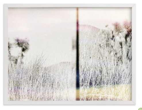 Joshua Tree Art Print 30x40 - Minted