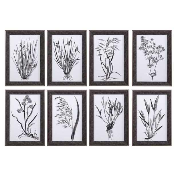 Classic Botany Framed Prints, S/8 - Hudsonhill Foundry