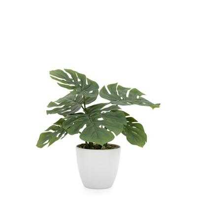 """Villa 4.5"""" Diameter Faux Potted 10"""" Plant in Monstera design by Torre & Tagus - Burke Decor"""