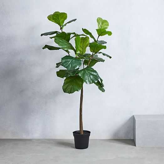 Faux Fiddle Leaf Fig Plant 5' - West Elm