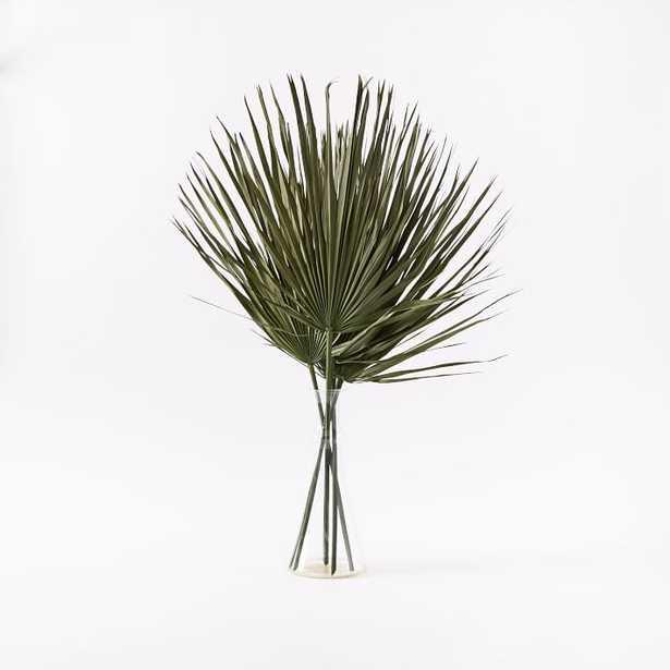 Dried Green Palm Leaf Stem Bunch - West Elm