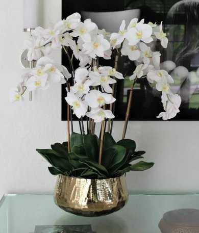Phalaenopsis Orchids Floral Arrangement and Centerpiece in Planter - Wayfair