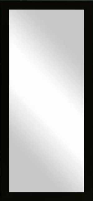 "Dalessio Wide Tall Full Length Mirror- Black 65.5"" x 30.5"" - Wayfair"