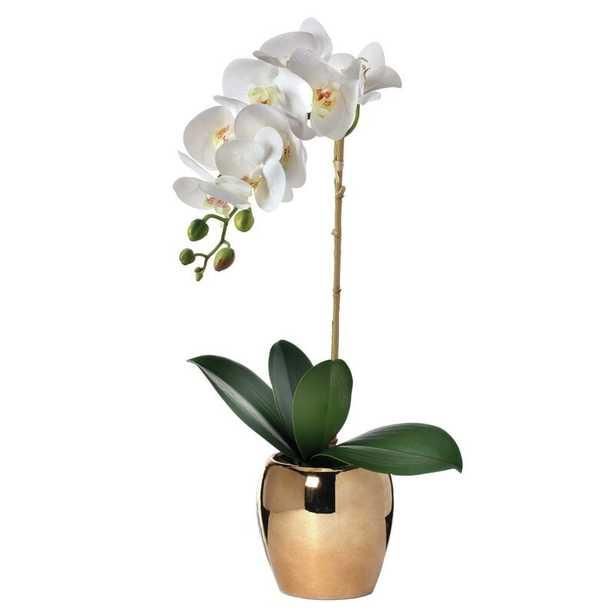Orchid Floral Arrangement And Centerpiece In Vase - Wayfair