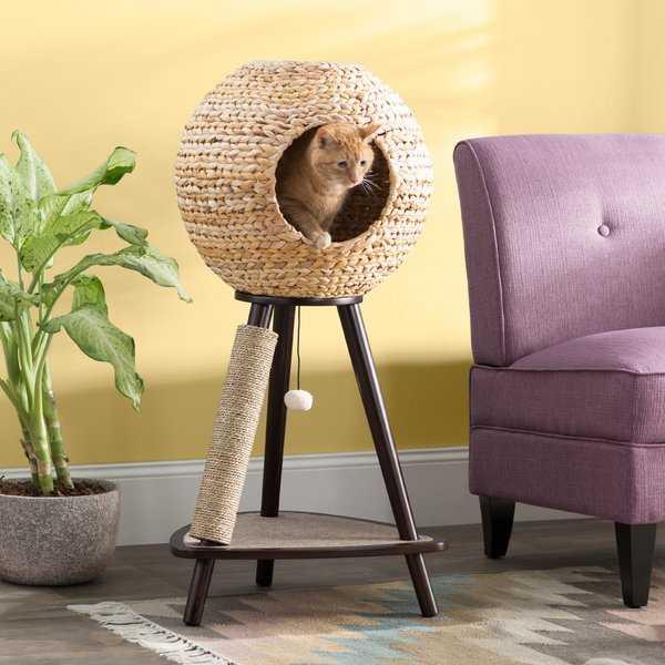 "Adriana 44"" Sphere Scratch Post Cat Tree - Wayfair"