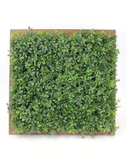 Faux Wallpiece Boxwood Hedge - Wayfair