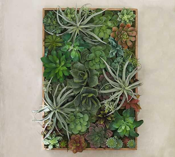 Faux Succulent Wall Art - Pottery Barn