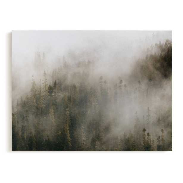 """pacific north fog, 30"""" x 40"""" canvas - Minted"""