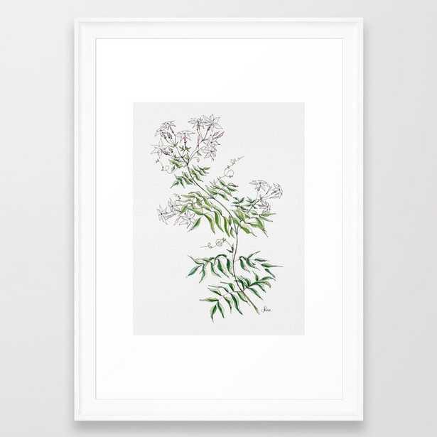 Jasmine Flower Illustration Framed Art Print - Society6