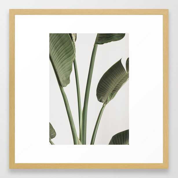 Tropical Palm Banana Plant Leaf Framed Art Print - Society6