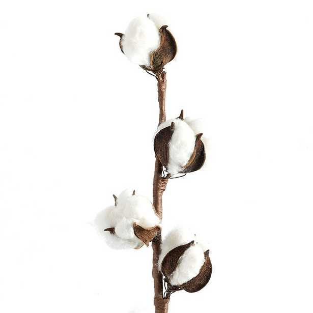 Cotton Stem - Ballard Designs