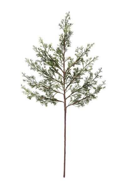FAUX CYPRESS BRANCH - McGee & Co.