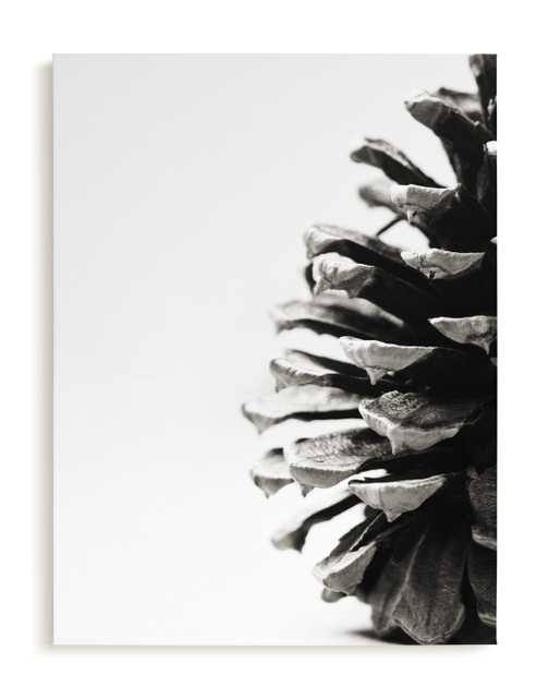 Pine Cone - Minted