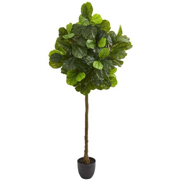 6' Fiddle Leaf Artificial Tree (Real Touch) - Fiddle + Bloom