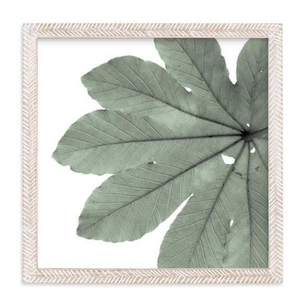 """Leaf in Green, 11""""x11"""", Whitewashed Herringbone Frame - Minted"""