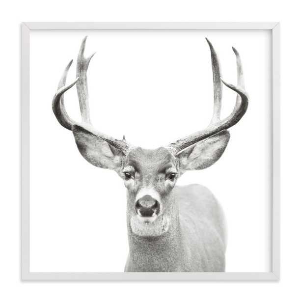 Buck - Minted