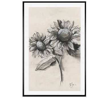 """Charcoal Sunflower Sketch, Sunflower With Stem, 28"""" X 42"""" Wood Gallery, White, No Mat - Pottery Barn"""