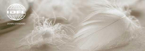 Euro Sham Filler - Noble Feather Co.