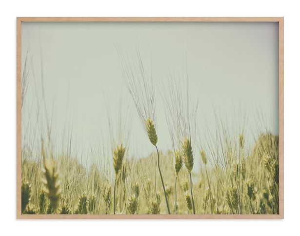 Golden Grass - 40x30 - Natural Raw Wood Frame - Minted